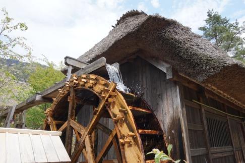 I fantastici tetti in paglia / Thatched roof