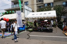 Flower stand at Hakusan Jinja