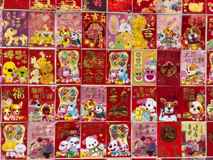 Chinese zodiac murales- Details