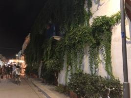 Angoli verdi della città / Green corners of San Vito