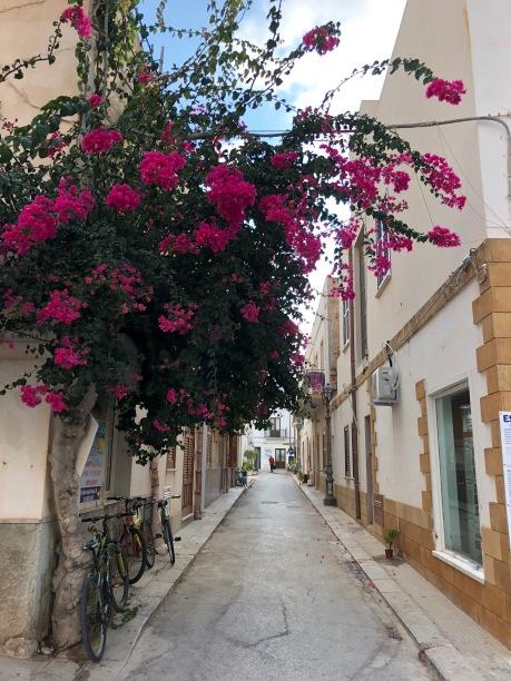 Una delle mie stradine preferite / One of my favourite alleys